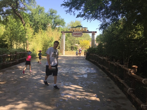 Joe, Zoo, 2018